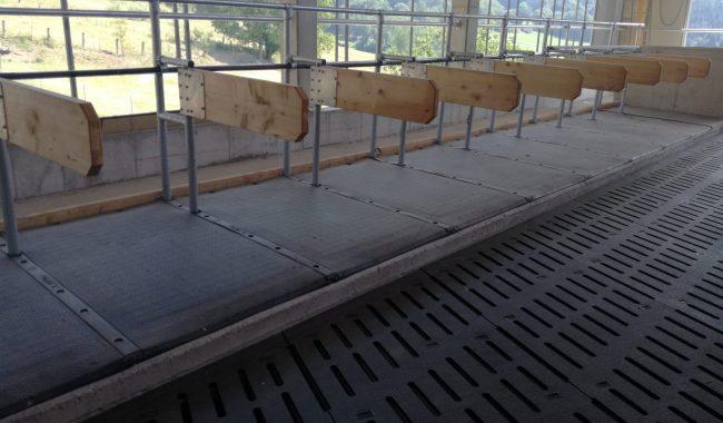 Gummimatte Wing Flex mit Laufgangbelag KuraS