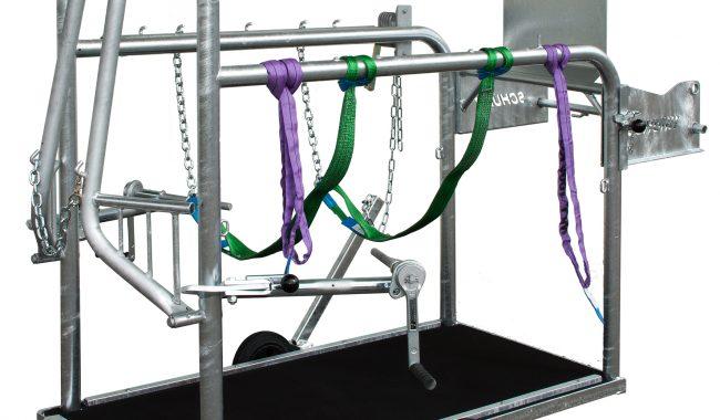 Schurr Klauenpflegestand - mit durchgehendem Stahlblechboden und Gummibelag - inkl. 2 ausziehbaren Vorderfußwinden und 1 Hinterfußwinde, rückschlagfrei