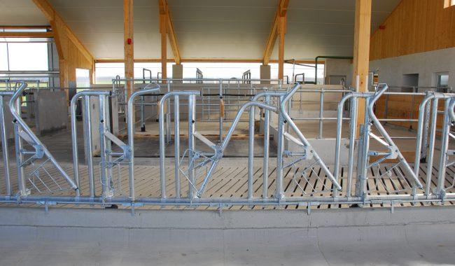 Das Rundbogen-Sicherheits-Selbstfanggitter zeichnet sich durch eine sehr große, nach oben offene Eintrittsöffnung aus.