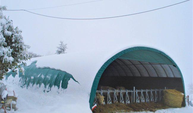Auf Wunsch wird für jede Halle eine Statik berechnet, um auch bei höherem Schneedruck die Sicherheit des Gebäudes zu gewährleisten